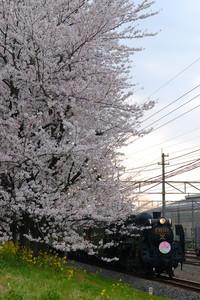 1304chichibu_005.jpg