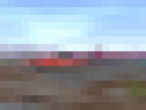 0709laycon_mosaic.jpg